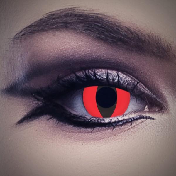 cat in red katzenaugen kontaktlinsen. Black Bedroom Furniture Sets. Home Design Ideas